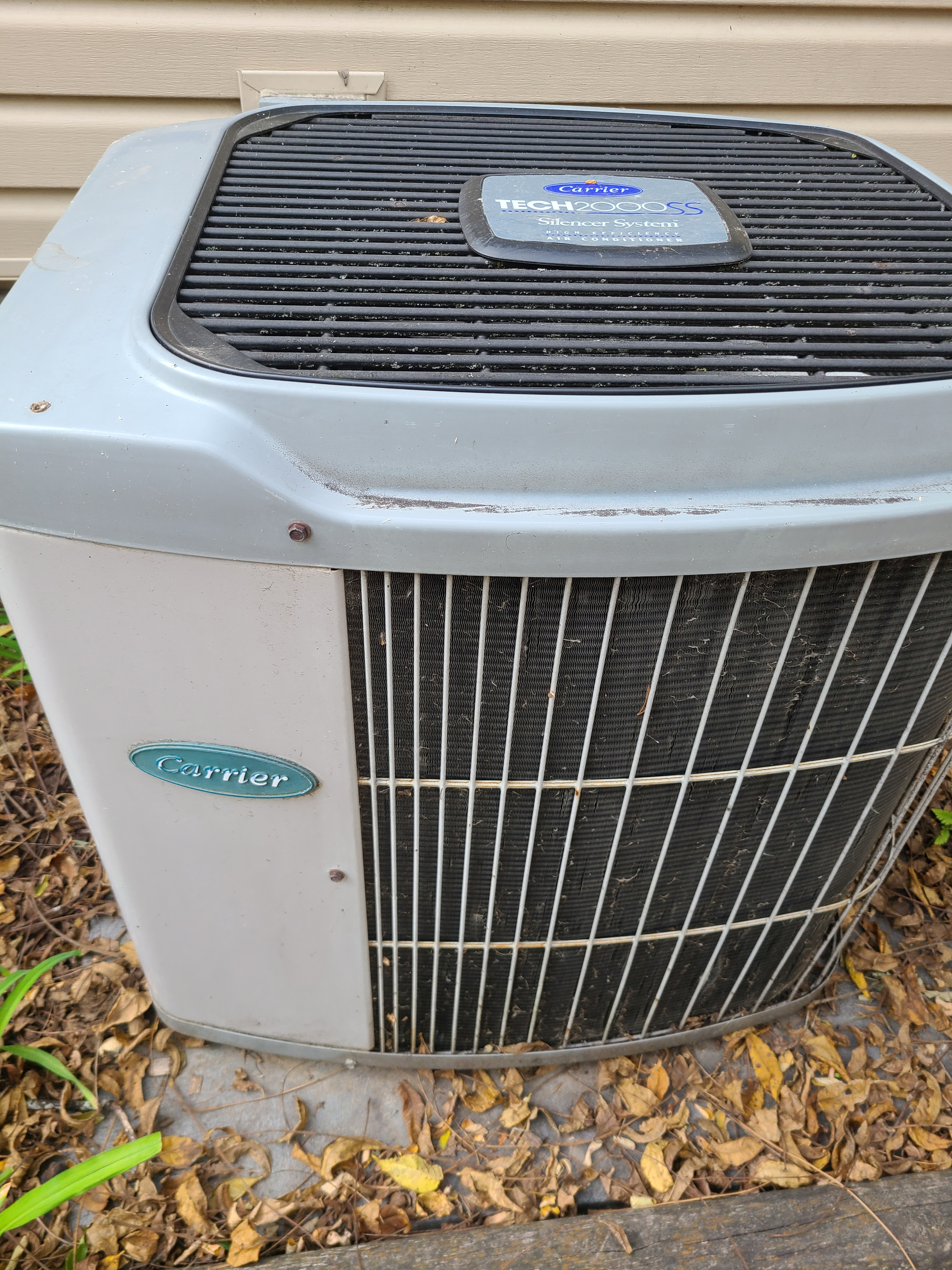 Condensing unit in back yard