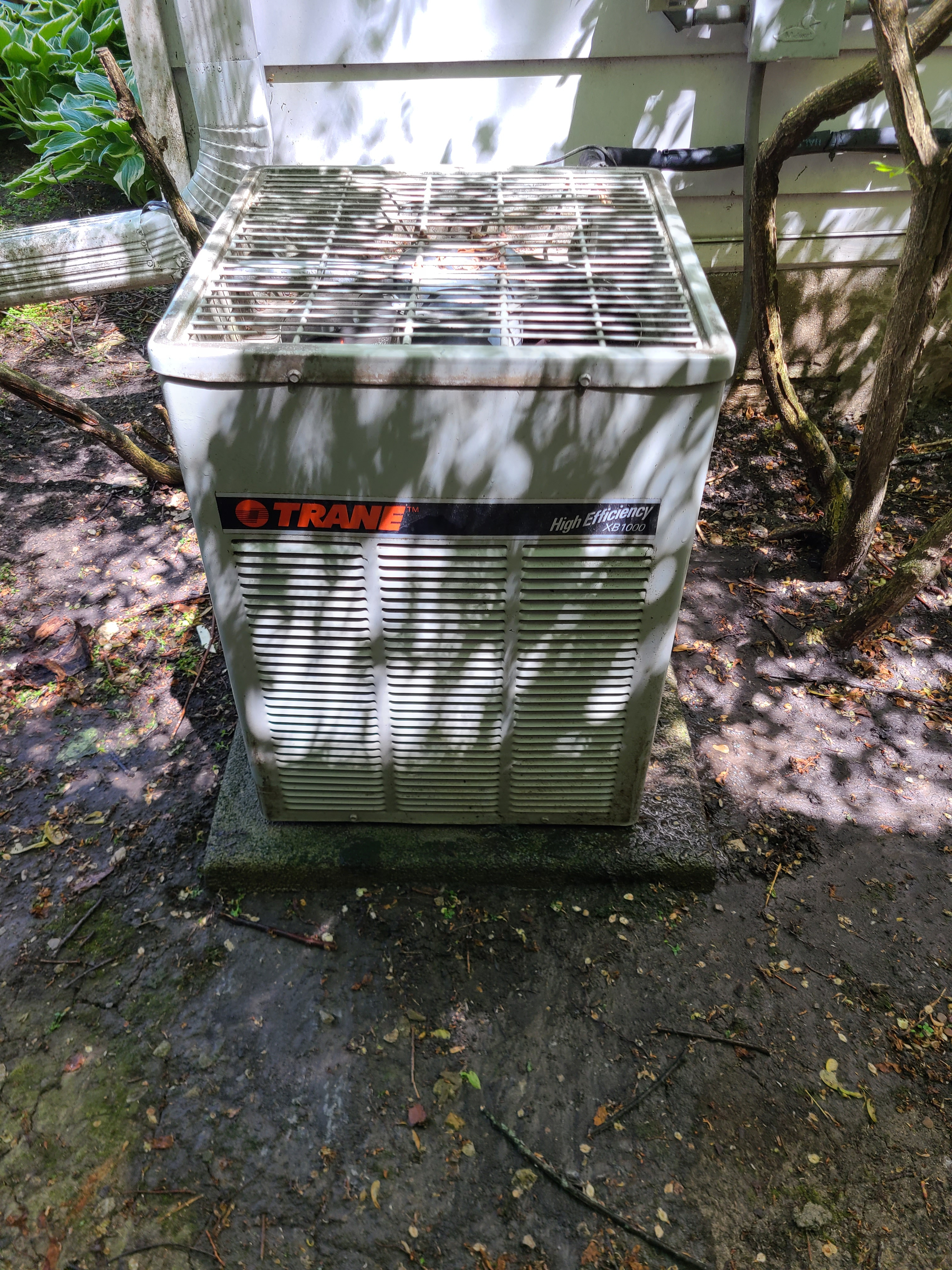 Trane r22 system...old but functional...recommendation replacement unit