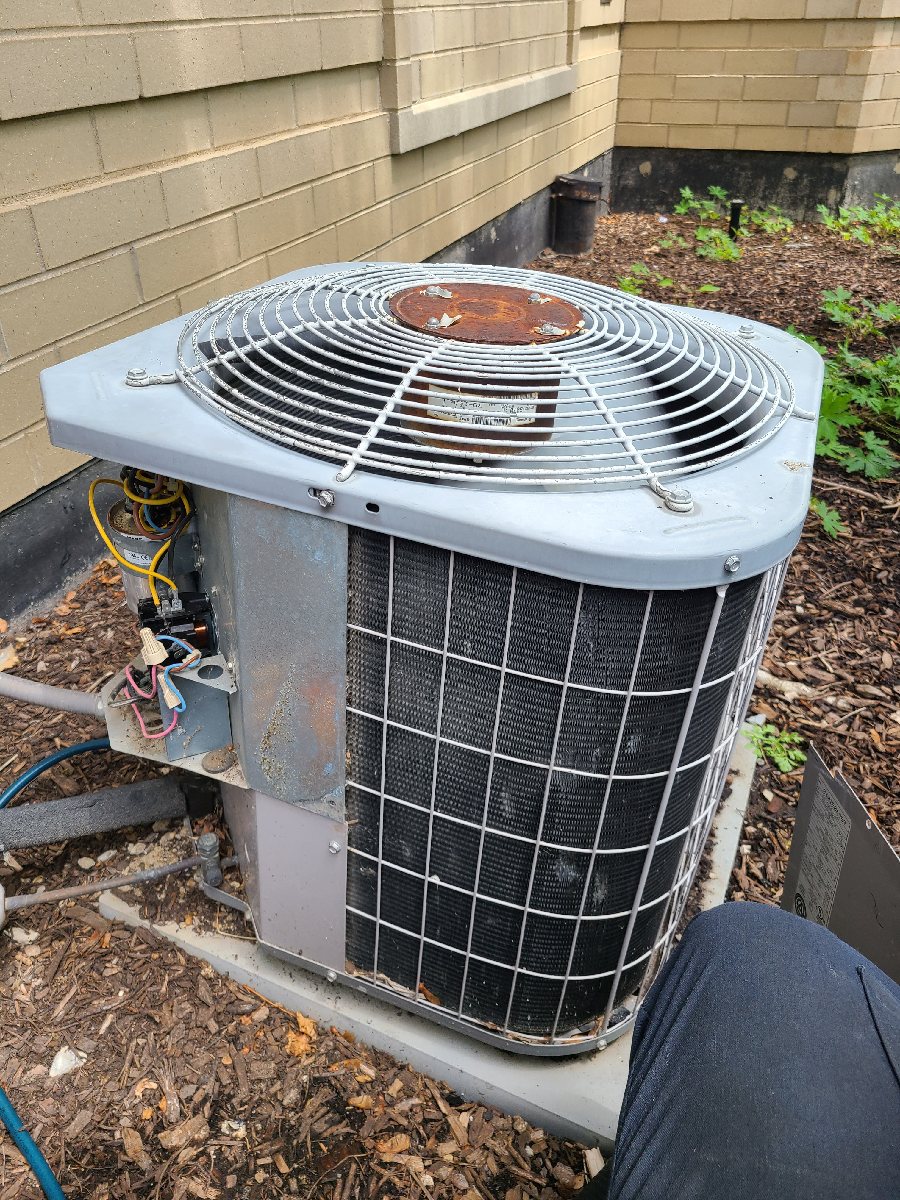 Carrier summer ac clean and check. System tuned up and ready for summer.