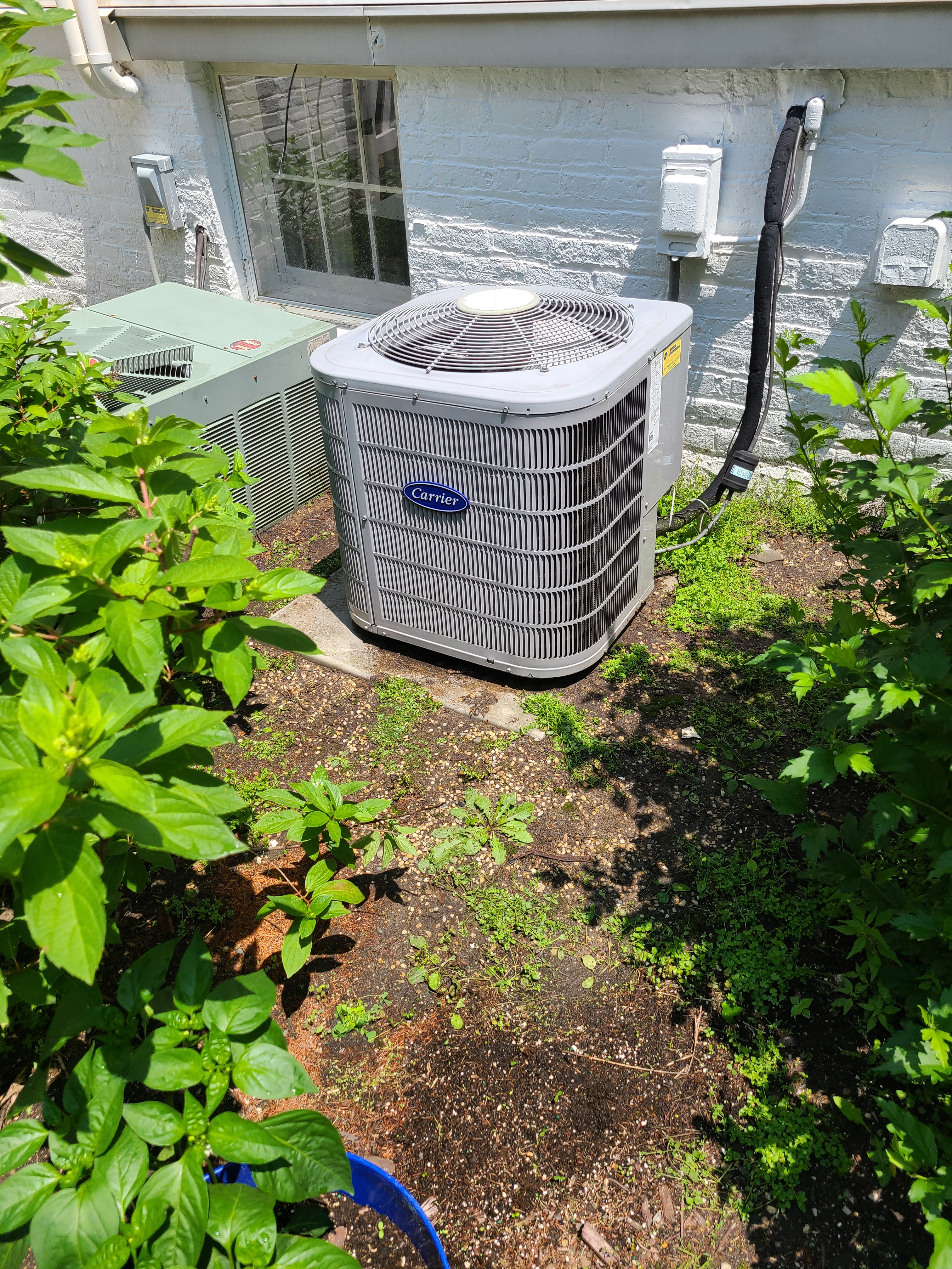 Carrier air conditioning maintenance.