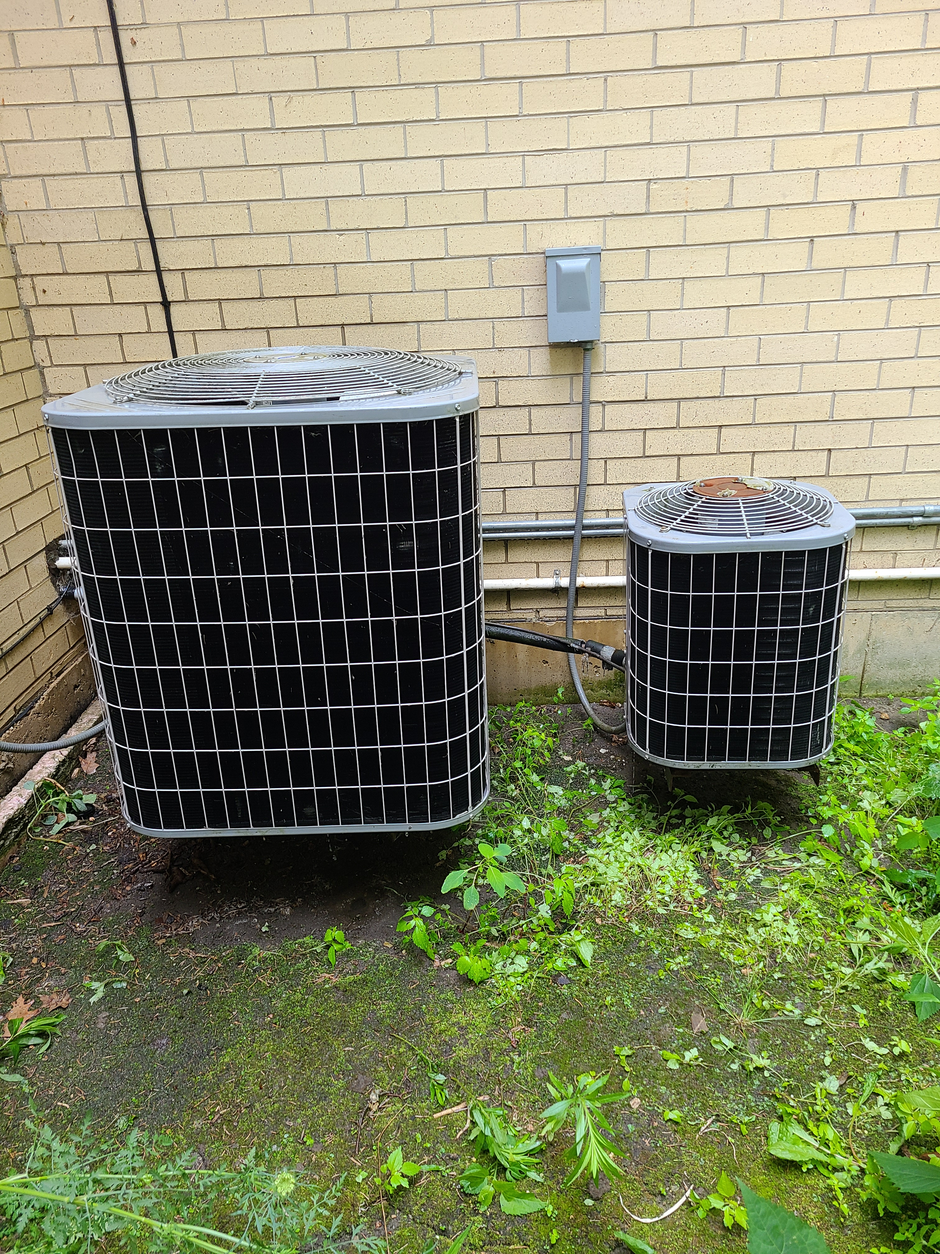Carrier air conditioning maintenances.