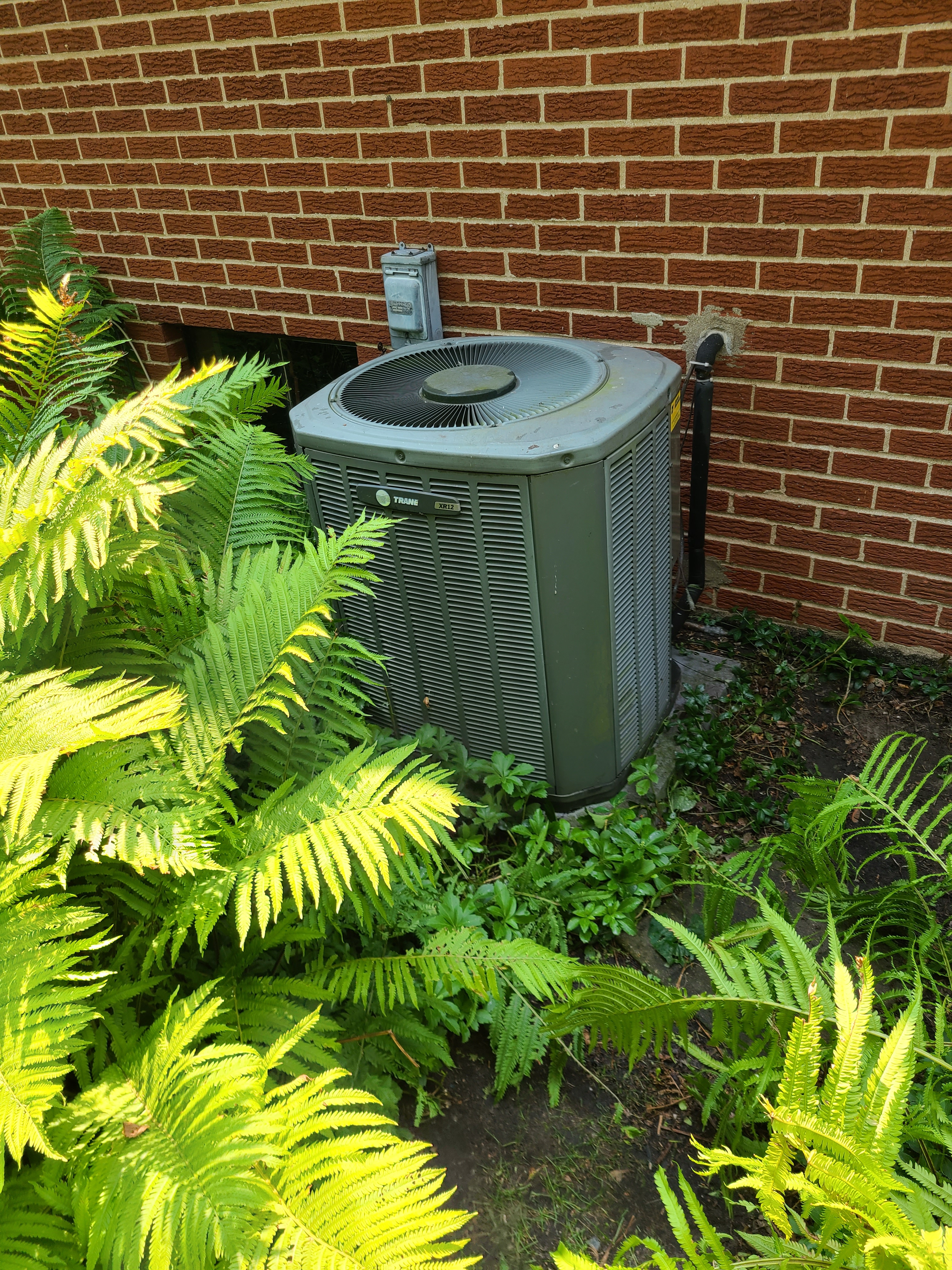 Trane r22 system cleaned and tested